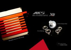 mks-servos2013