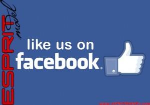 Facebook 710x500