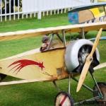 Aircraft of Joe Nall 2015 (4)