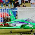 Aircraft of Joe Nall 2015 (6)