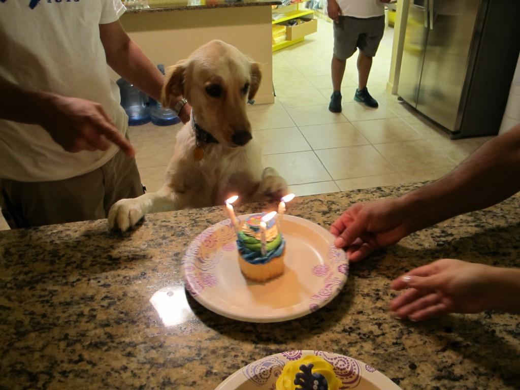 111215 - Charlie's Birthday (4)