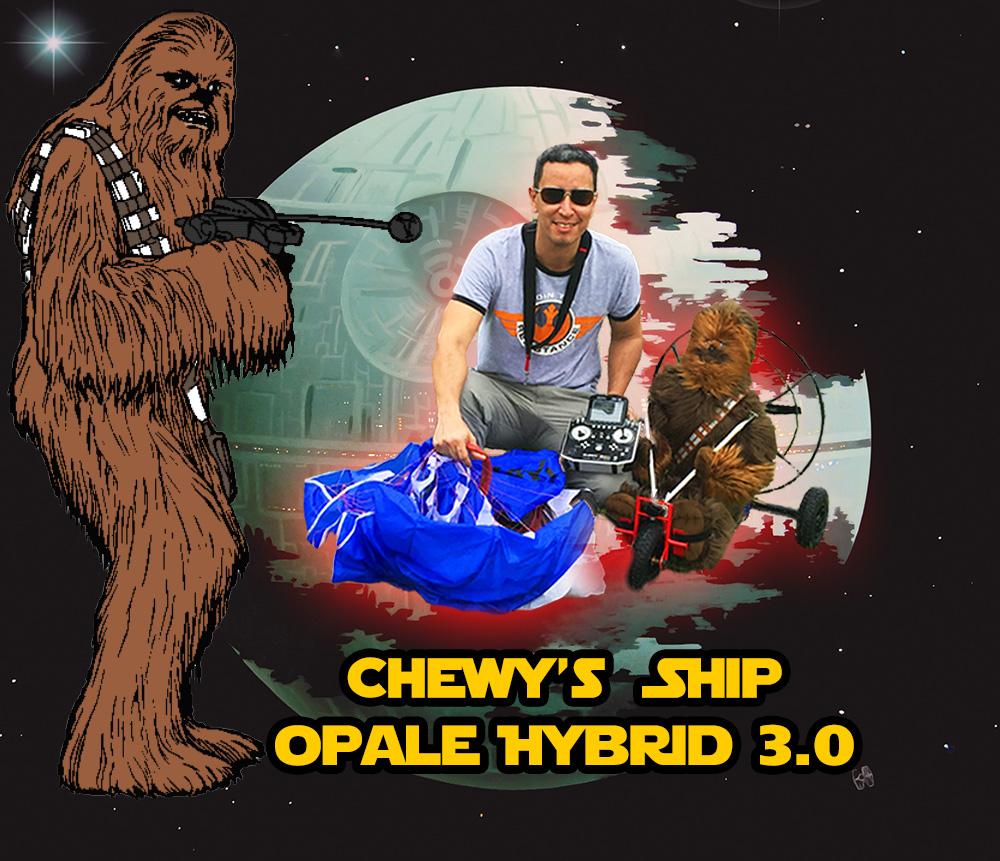 Star Wars Chewy Pilot
